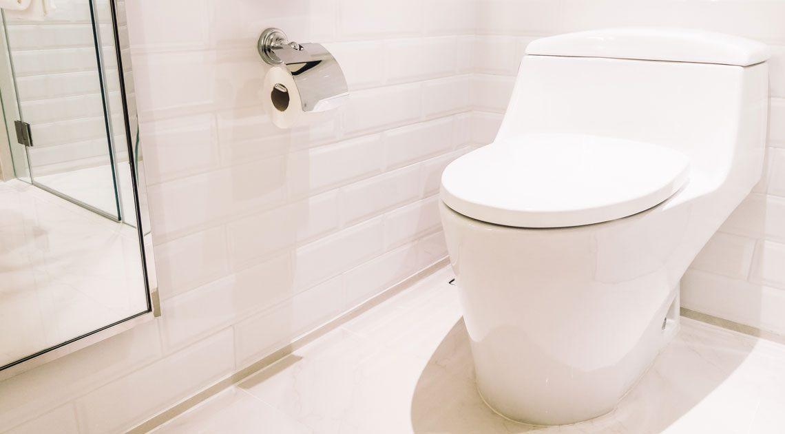 Comment fonctionne un WC japonais ?
