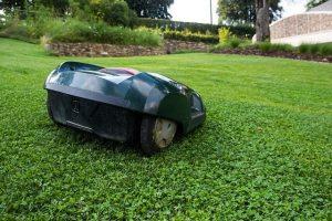 poser une pelouse avec du gazon en rouleau